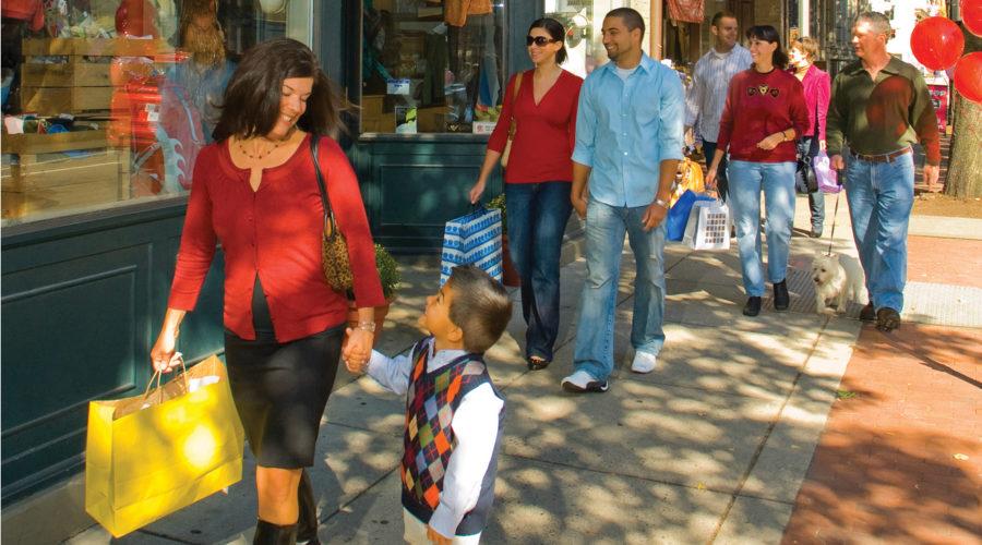 Folding Shopping Cart Buyer's Guide